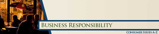 Business Responsibility Banner